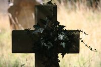 Ivy on a Cross: Click to enlarge